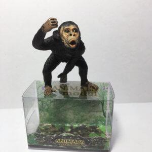Обложка Шимпанзе